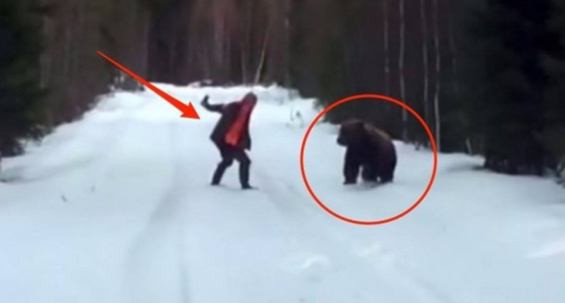 Відео: Житель Швеції показує, що робити, якщо на вас напав ведмідь