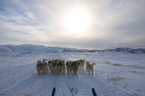 Цікавий факт про футбол в Гренландії