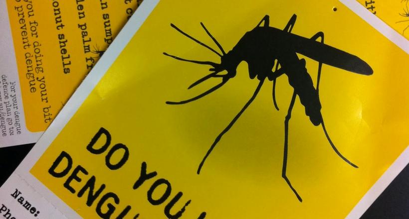 Лихоманка денге: про це варто знати, вирушаючи на відпочинок в тропічні країни