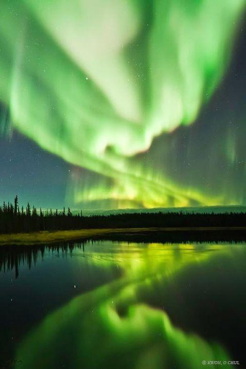 Сліпучий танець Аврора Бореаліс в нічному небі Канади