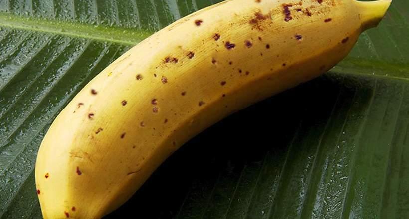 Вчені створили корисні банани, які можна їсти разом зі шкіркою