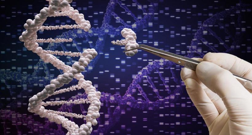 Генетично модифіковані дівчинки і китайський вчений, який зник