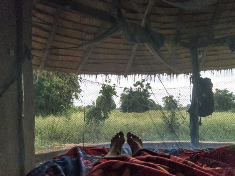 Як захистити себе від комарів в Азії
