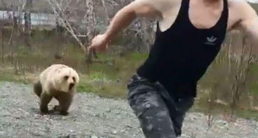 Відео: Чому спиною до хижака краще не вставати — ведмідь раптом погнався за туристом