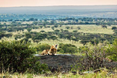 Самий екзотичний і привабливий континент. Рушайте в незабутній тур по Африці разом з нами!