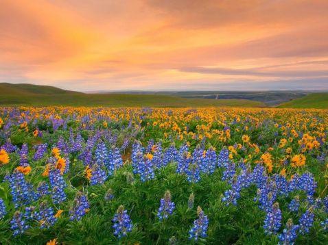 20 місць на планеті, де природа не пошкодувала кольорів