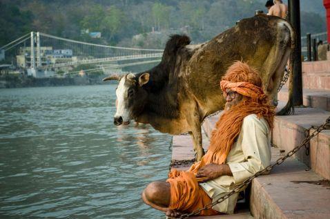Рішікеш — дивовижне місто в Індії, де можна зустріти незвичайних людей!