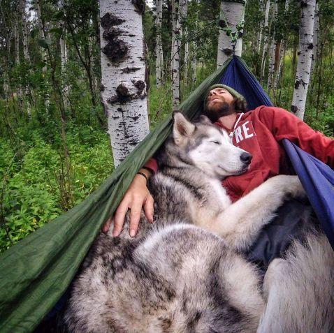Знімки епічних пригод хлопця і його собаки облетіли весь світ. Про такого господаря мріють усі вихованці!