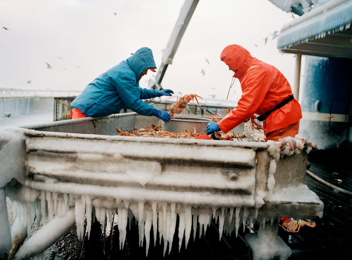 Североморск требуются рыбообработчики с опытом работы на рыбфабриках.