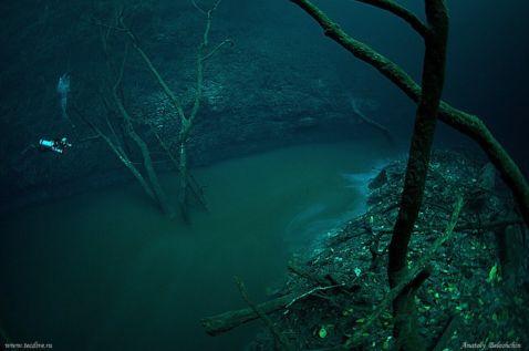 Дайвер виявив річку... під водою. В таке явище складно повірити!