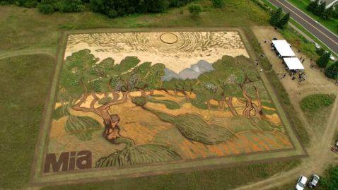 Ти не повіриш, коли дізнаєшся, з чого зроблена ця картина Ван Гога «Оливкові дерева»