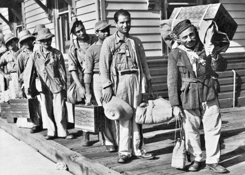 19 знімків про те, як виглядала імміграція в Австралію в 20 столітті