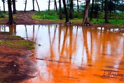 Сезон дощів в штаті Гоа, як це буває. Наша фоторозповідь