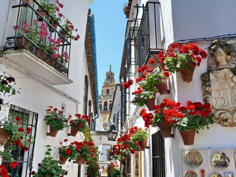 Фестиваль квітів у іспанських патіо. Красиве життя простих іспанців