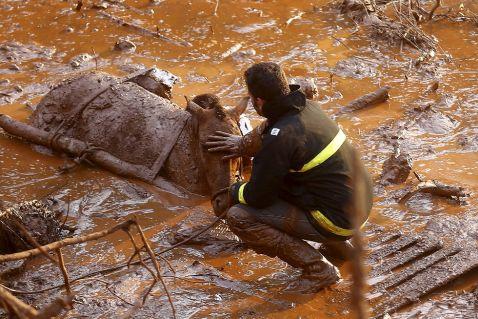 Техногенна катастрофа: токсична бруд в Бразилії