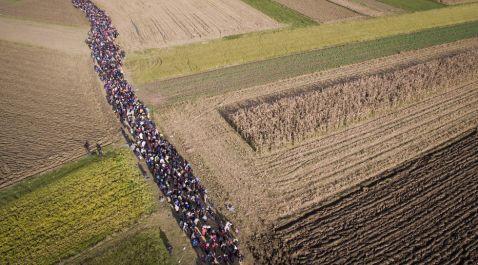 Шокуюча ситуація: реальні масштаби міграційного кризи в Європі