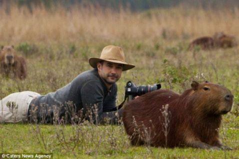 19 фотографів дикої природи, які у своїй роботі йдуть до кінця