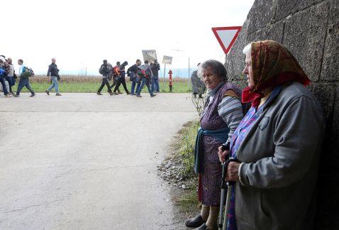 Мігранти стройною натовпом. Страхітлива міграційна ситуація в Європі