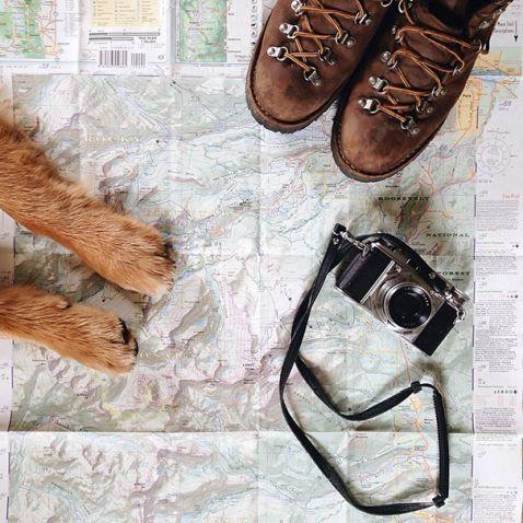 Хлопець з Колорадо доводить, що собаки — найкращі супутники в подорожі