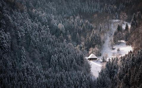 15 будинків, від яких віє теплом і затишком