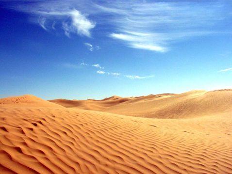 5 небезпечних хижаків, яких можна зустріти в пустелі