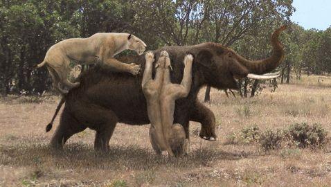 10 страшних тварин, які, слава богу, вимерли!