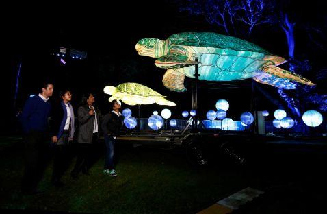 8 дивовижних знімків з фестивалю світлових скульптур в Сіднеї