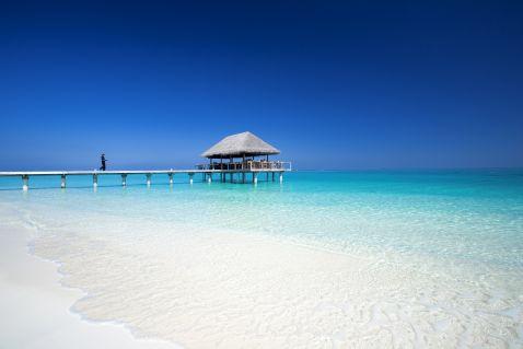 Гастрономічні задоволення в Velassaru Maldives