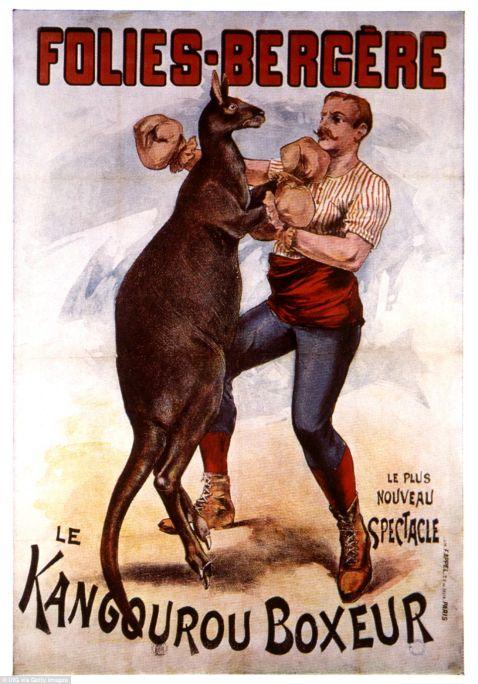 Бокс з кенгуру в фотографіях 20-го століття