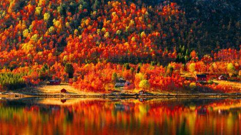 11 теплих і яскравих фото, які доводять, що осінь нічим не гірше літа