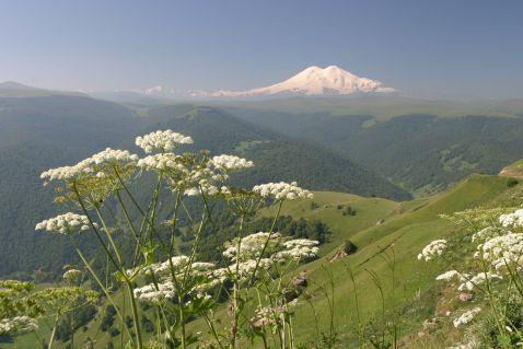 Найвища гора Росії