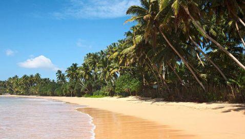 Coral Travel запустив зимові рейси на Шрі-Ланку