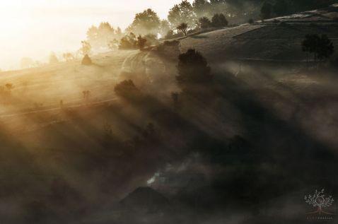 15 казково прекрасних осінніх фотографій, знятих на камеру за $250