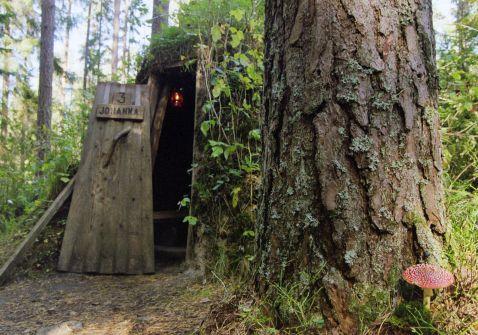 Самий дикий готель у лісах Швеції