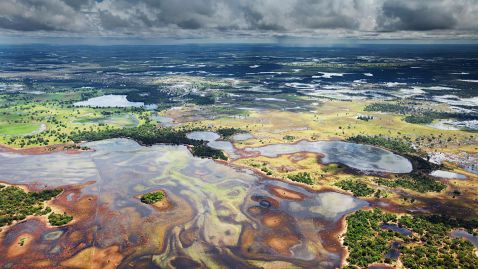 Найбільше болото
