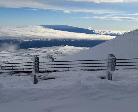 Гаваї завалило снігом