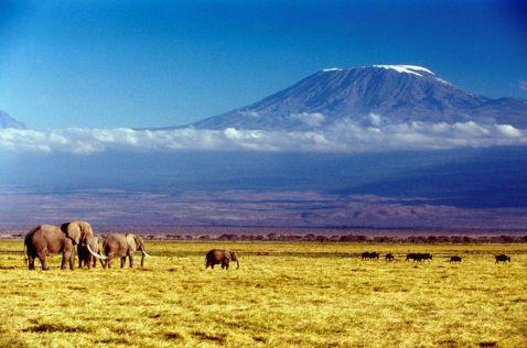 Найвища точка Африки
