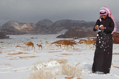Цукру, Саудівська Аравія, Єгипет: звідки з'являється аномальний сніг у пустелях