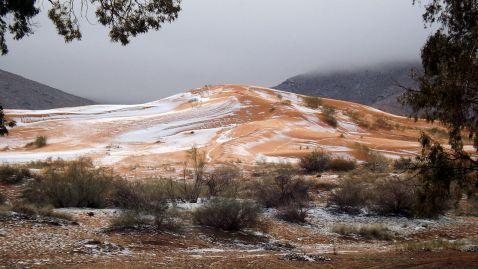 Вперше за 37 років у Сахарі випав сніг