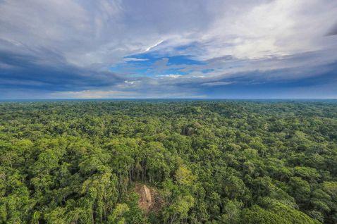 10 сенсаційних фото ізольованого племені, яке не знає про нас