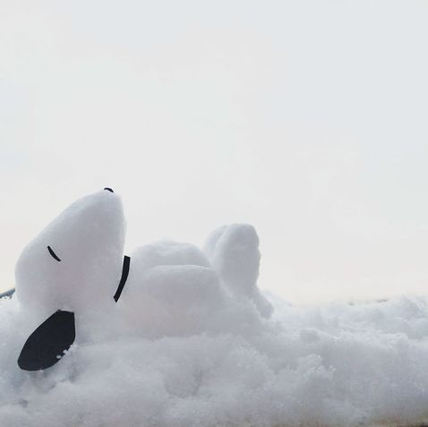 Що виходить, коли сильний снігопад обрушується на Японію?