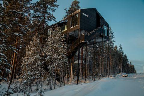Найкраще місце для спостереження північного сяйва: в Лапландії відкрили готель на «деревах»