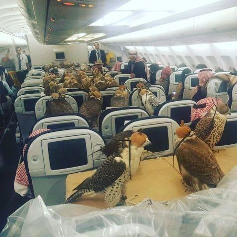 Ви офигеете: вгадайте, кому принц Саудівської Аравії купив місця в літаку???