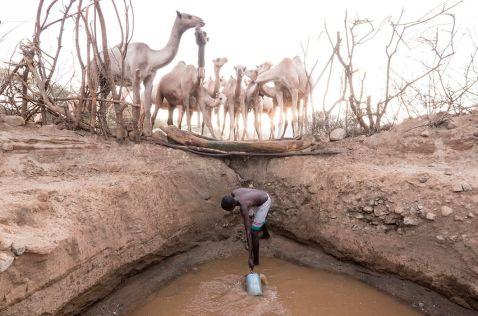 29 фотографій Кенії, доводять, що Африку треба побачити своїми очима