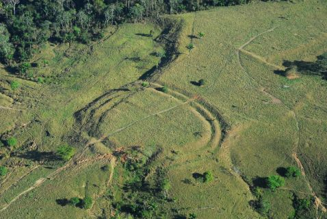 Вчені знайшли в лісах Амазонки Стоунхендж