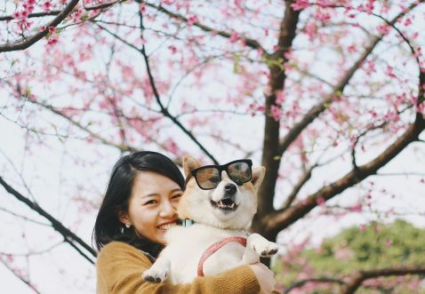 20 дивовижних фото з японського Инстаграма про те, що весна прийшла!