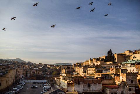 Марокко,Фес, шкіряні майстерні