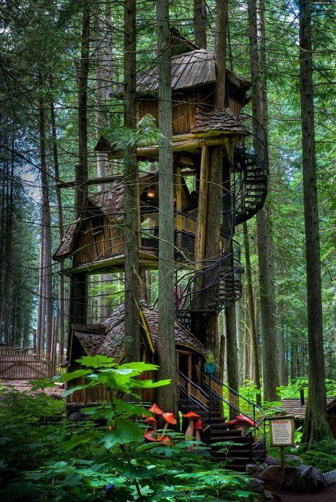17 дивовижних будиночків на дереві з усіх куточків світу