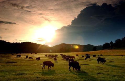58 неймовірних фотографій Національних парків Америки. Частина 3